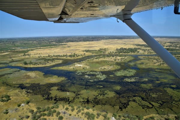 botswana-okavango-delta