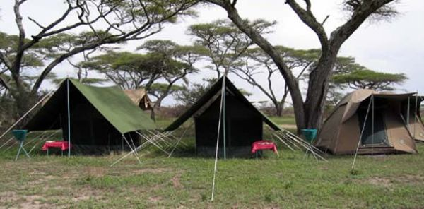 camping in serengeti 4